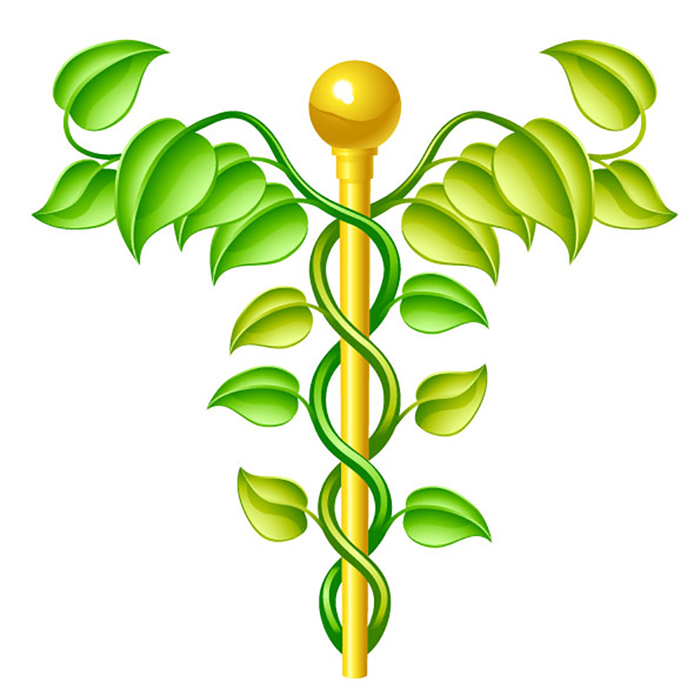 Orthodox & Alternative Medicine